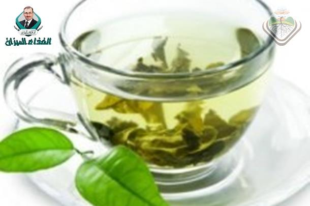 Use crude olive leaf juice as a natural antioxidant for the stability of sunflower oil during heating.