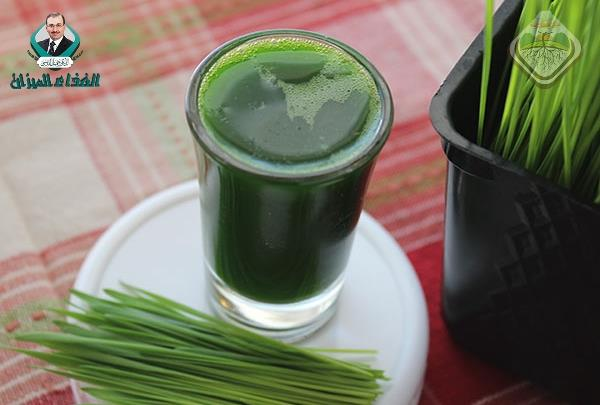 Glycemic and lipemic response of wheat grass incorporated recipes.