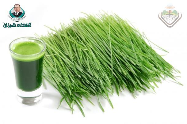 Wheat Grass & Weight loss