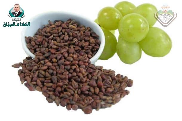 Inhibitory Effects of Grape Seed Extract on Lipases.